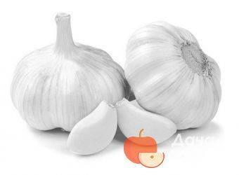 Чеснок с богатой историей: «грибовский» озимый