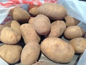 Картофель леди: описание сортов ред леди, леди клер, леди розетта, характеристики, достоинства, особенности культивирования, отзывы
