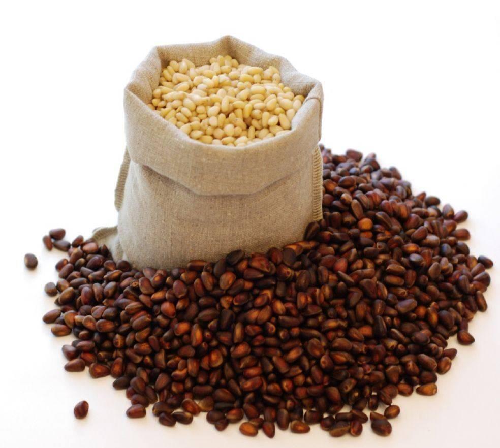 Кедровые орехи – как хранить полезное лакомство?