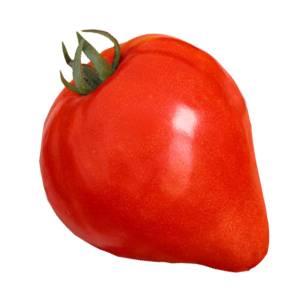 Сорт томата «воловье сердце»: описание, посадка, особенности выращивания и ухода