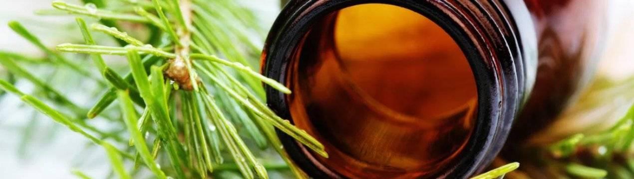Лечебные свойства пихтового масла и его применение в народной медицине