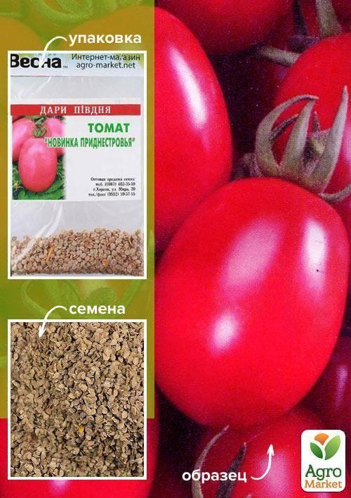 Хорошая урожайность с томатом «новинка приднестровья»: описание сорта, фото, особенности помидоров