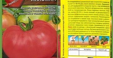 Характеристика ультрараннего томата лакомка и описание плодов