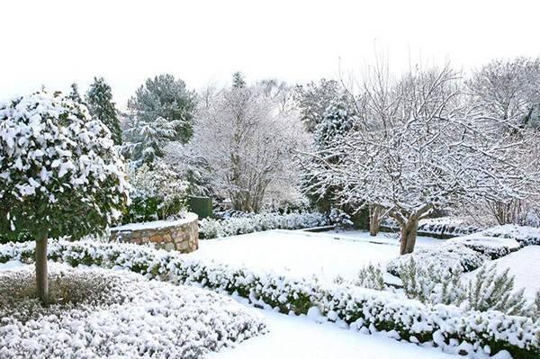 Что такое снегозадержание и как оно используется?
