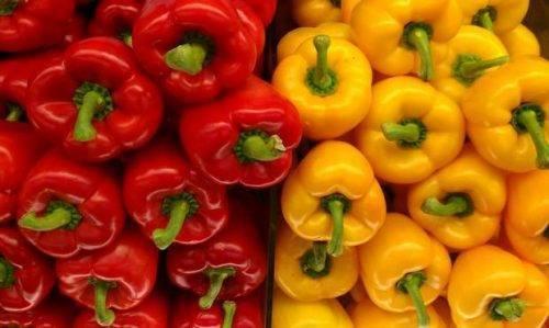 Перец сладкий адмирал колчак f1 - фото урожая, цены, отзывы и особенности выращивания