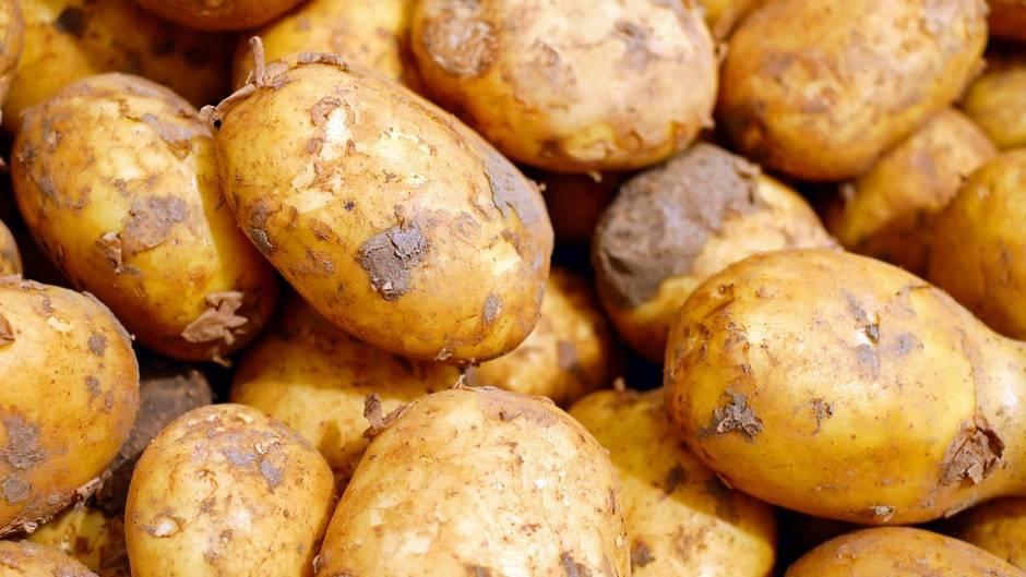 Как правильно и в чём лучше хранить картошку на балконе