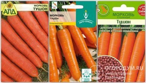 Морковь Ярославна