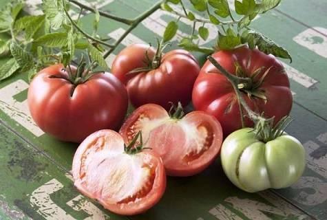 Хорошо зарекомендовавшие себя томаты — марманде: описание и характеристики сорта