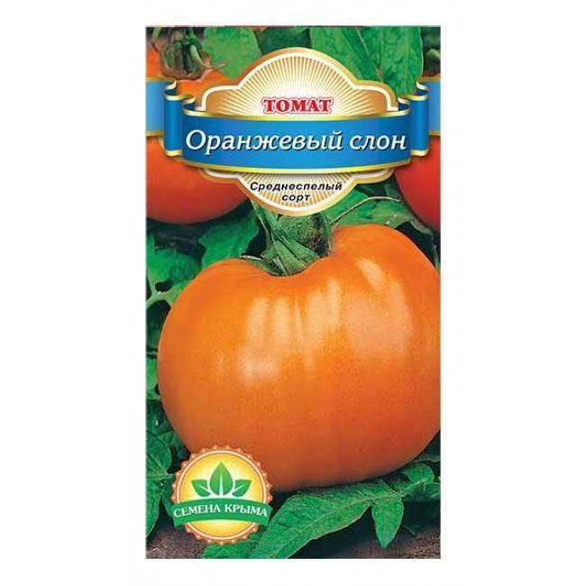 Томат оранжевый слон — описание сорта, урожайность, фото и отзывы садоводов