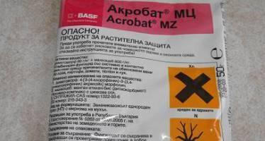 Акробат мц: инструкция по применению, отзывы о препарате, хранение