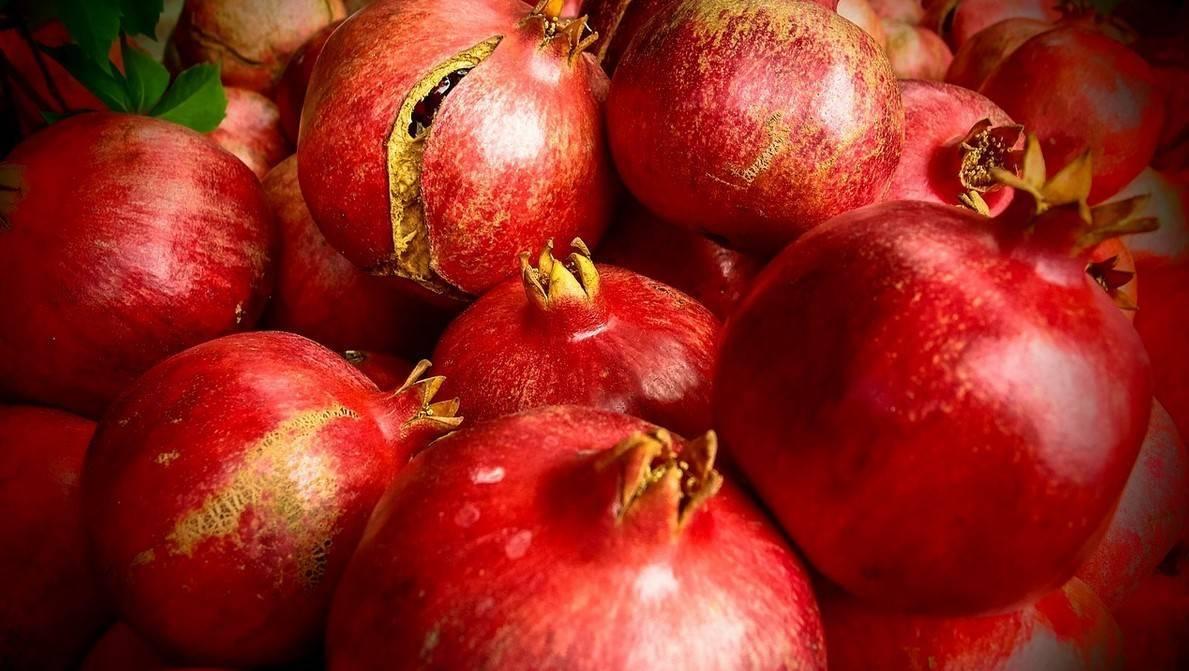 Чем полезен гранат и его косточки, вредные свойства фрукта  и противопоказания