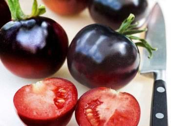 Томат индиго роуз: описание сорта, выращивание, отзывы