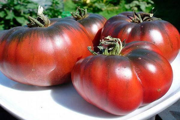 Подборка черных сортов томатов