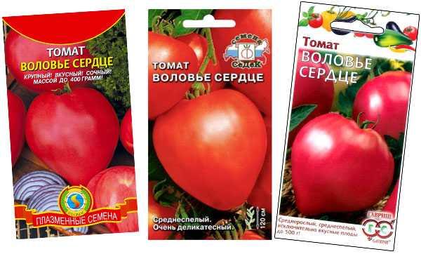Томат «воловье сердце»: отзывы, фото, урожайность и его характеристика