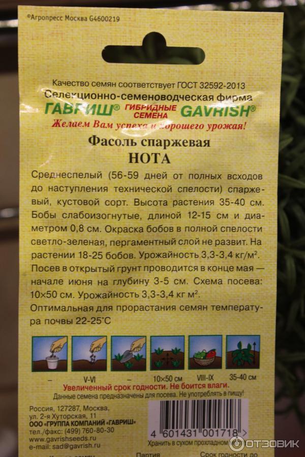 Лучшие сорта спаржевой фасоли для всей россии