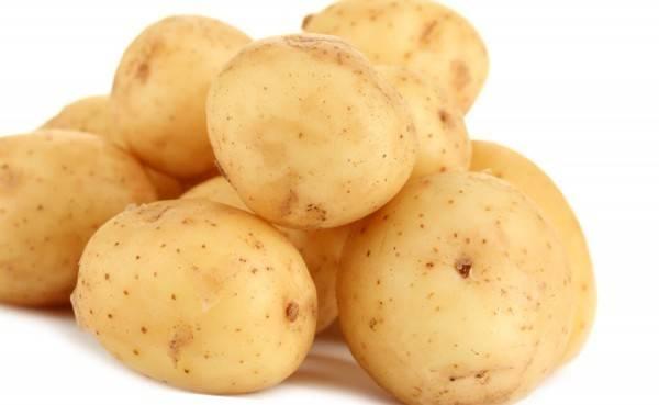 Когда наступает пора копать картошку: оптимальные сроки уборки и сбора урожая на хранение