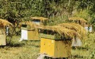 Инструкция по применению бипина для пчел