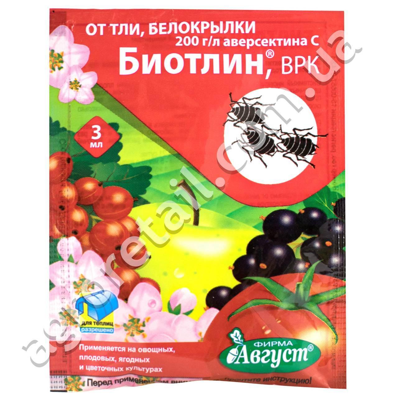 Как применять инсектицид конфидор от вредителей