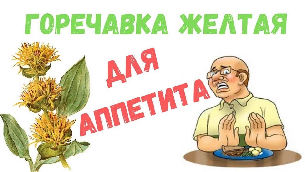 Горечавка желтая в медицине, противопоказания - народная медицина | природушка.ру