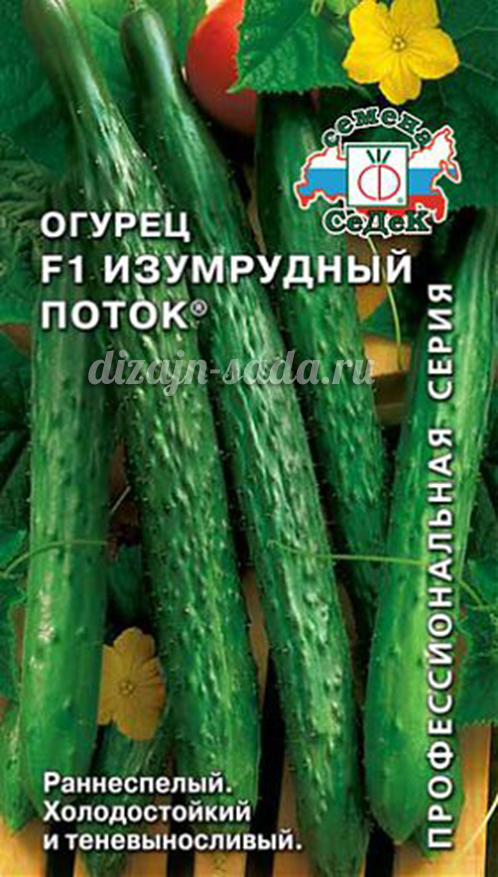 Огурцы изумрудный поток выращивание
