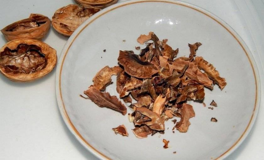 Лечебные свойства перегородок грецкого ореха и их противопоказания