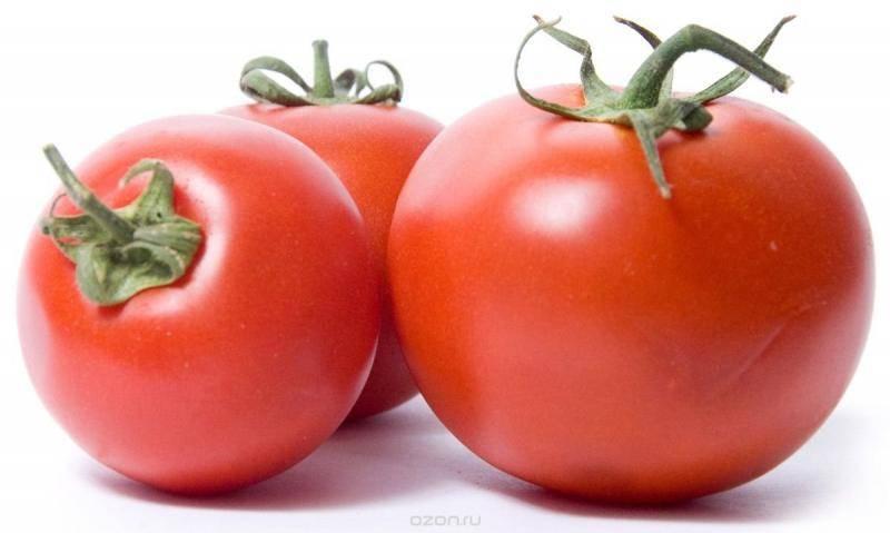 Томат «титан розовый»: описание сорта, фото и рекомендации по выращиванию помидоры