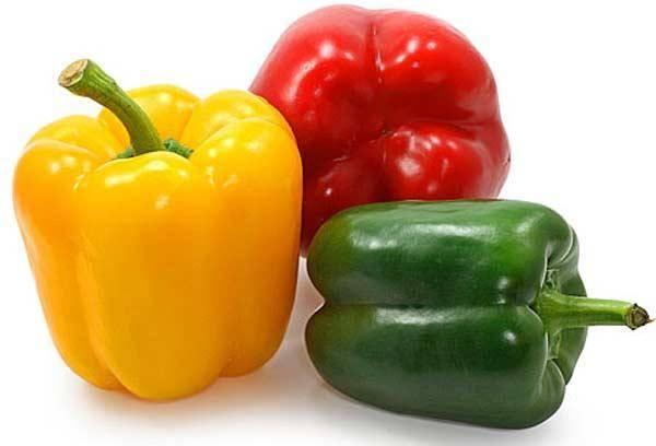 Посадка перца на рассаду: все про сроки, посев и уход за саженцами перца