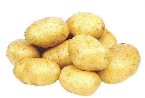 Средство «великан» для картофеля: инструкция и дозировки