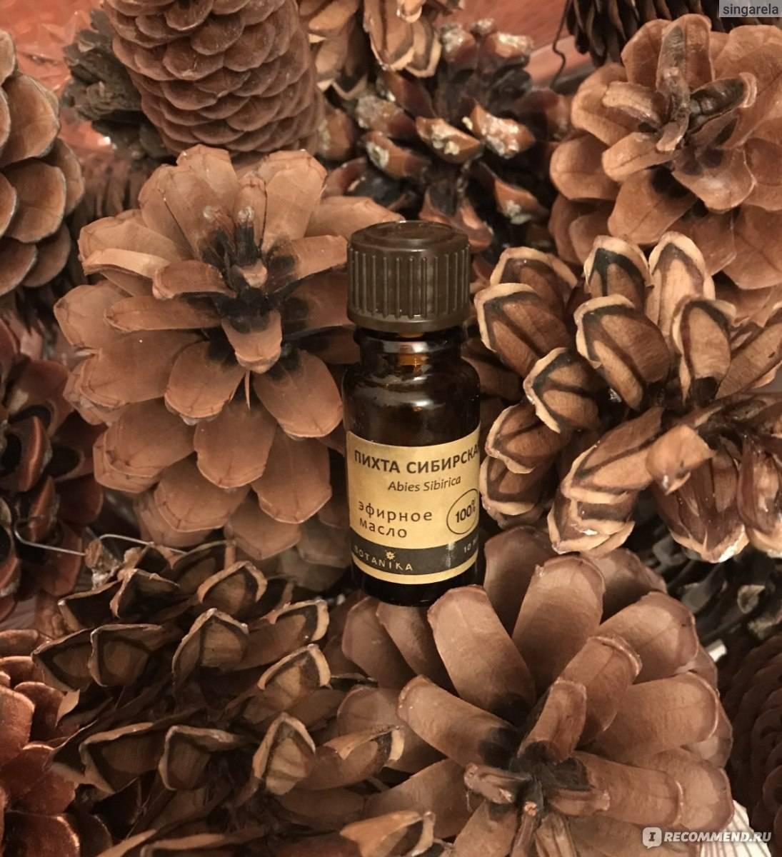 Масло пихты: лечебные свойства и противопоказания