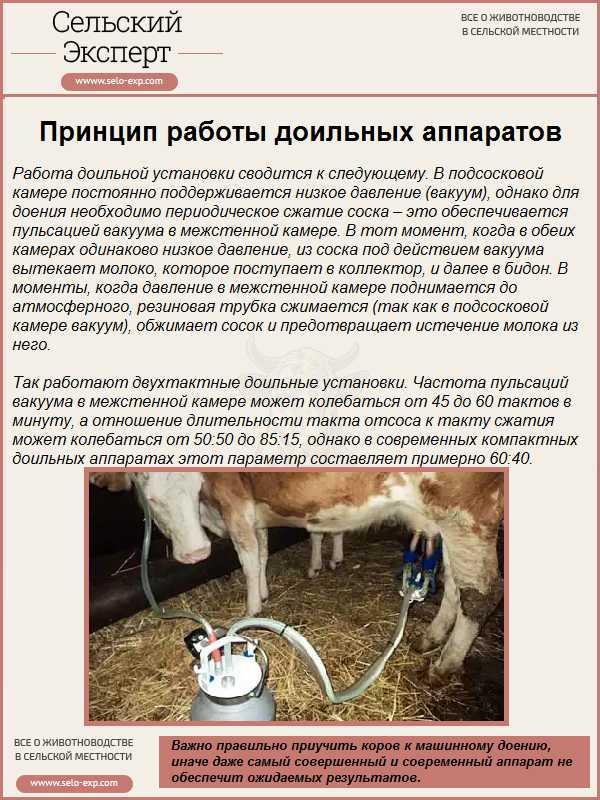 Глава ix. технология машинного доения [1980 карташов л.п., куранов ю.ф. - машинное доение коров]