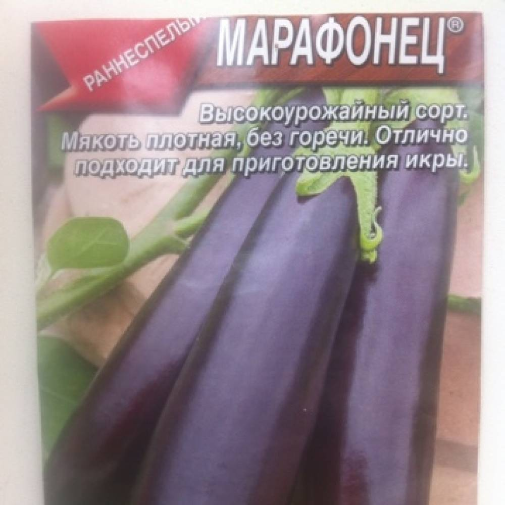 Лучшие сорта баклажанов для теплиц 2018-2019. мнение огородников