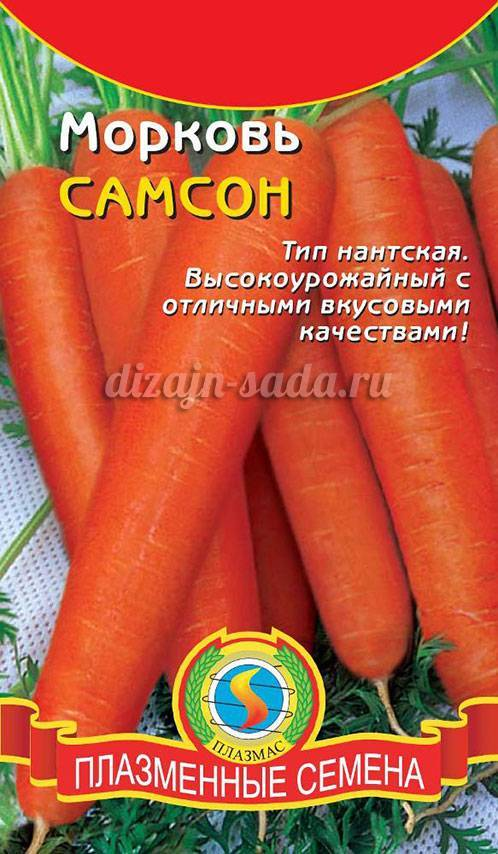 Морковь император описание сорта фото отзывы