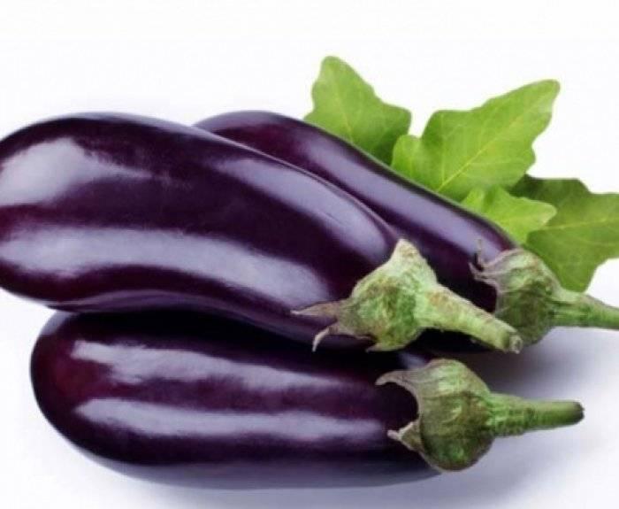 Томат черный принц — красивый, вкусный и неприхотливый овощ