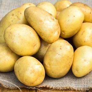 Картофель брянский деликатес - гарантия раннего урожая: описание сорта, характеристика