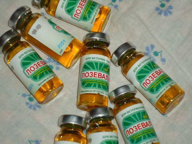 Список лекарств для пчел: виды и применение