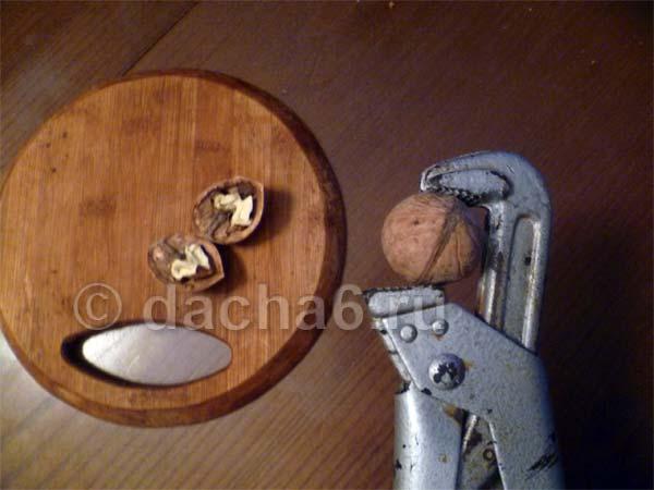 Скорлупа грецкого ореха применение: состав, полезные свойства