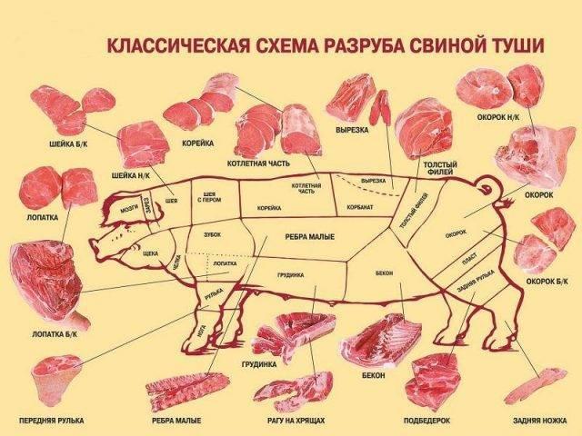 Выход мяса крс от живого веса таблица