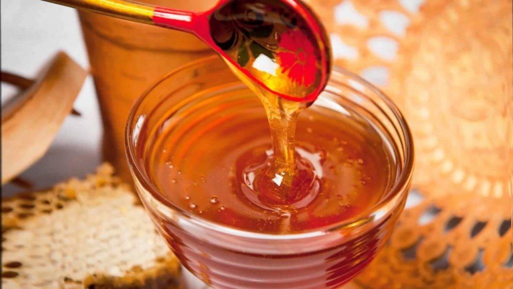 Записки пчеловода подкормка пчел молоком