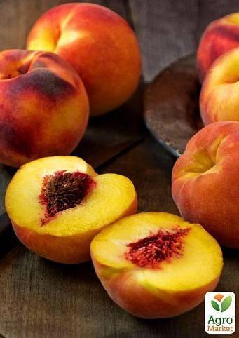 Колоновидные персики: лучшие сорта с фото и описанием