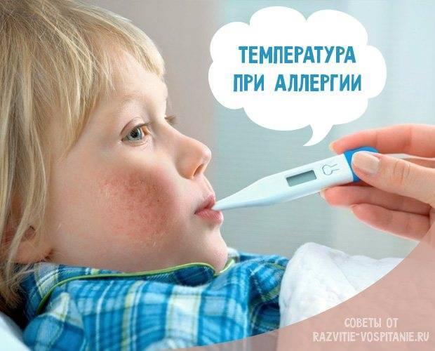 Аллергия у грудничков на черную смородину