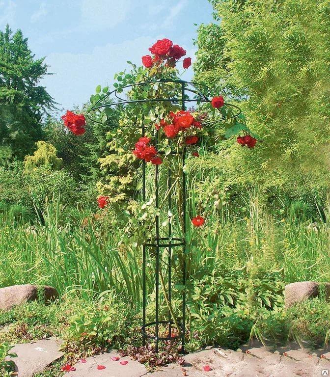 Из чего можно сделать опоры для плетистых роз своими руками