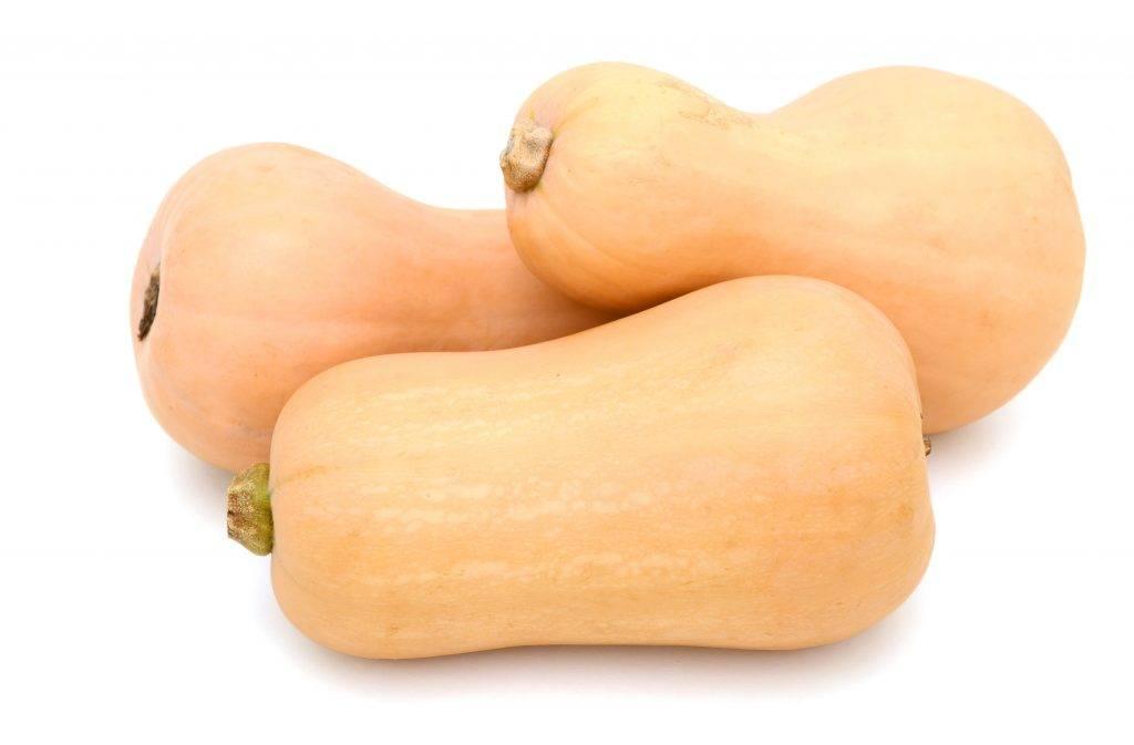 Характеристика и описание тыквы сорта матильда, выращивание и уход
