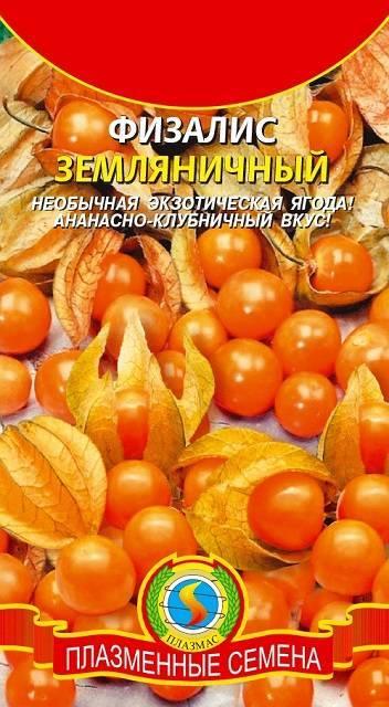 Физалис: характеристики съедобных и декоративных видов, условия выращивания
