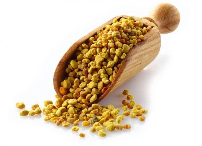 Пчелиная пыльца: полезные свойства, как принимать | пища это лекарство