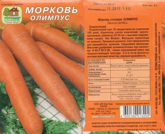 Морковь настена: описание сорта, фото, отзывы