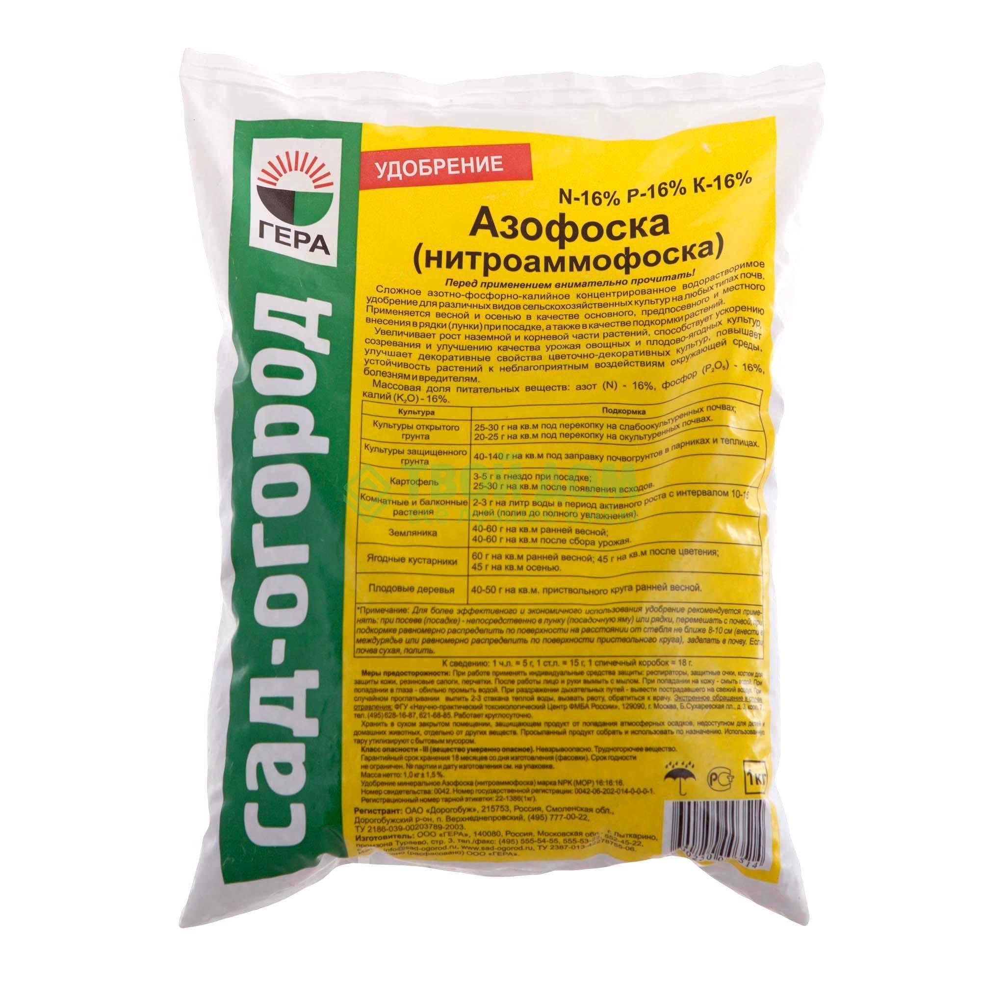 Как правильно подкармливать огурцы азотом