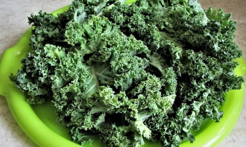Что приготовить из капусты кейл (кале) и другой супер-зелени?