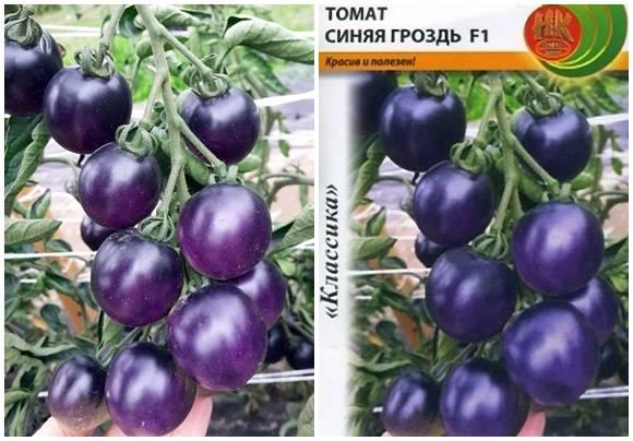 Полное описание томата грушовка: характеристики, фото и отзывы