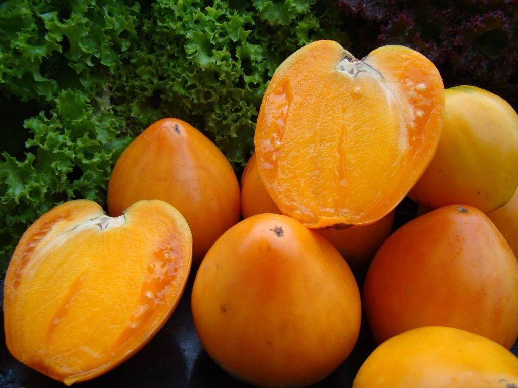 """Томат """"хурма"""": характеристика и описание сорта, урожайность, советы по выращиванию, фото помидор"""