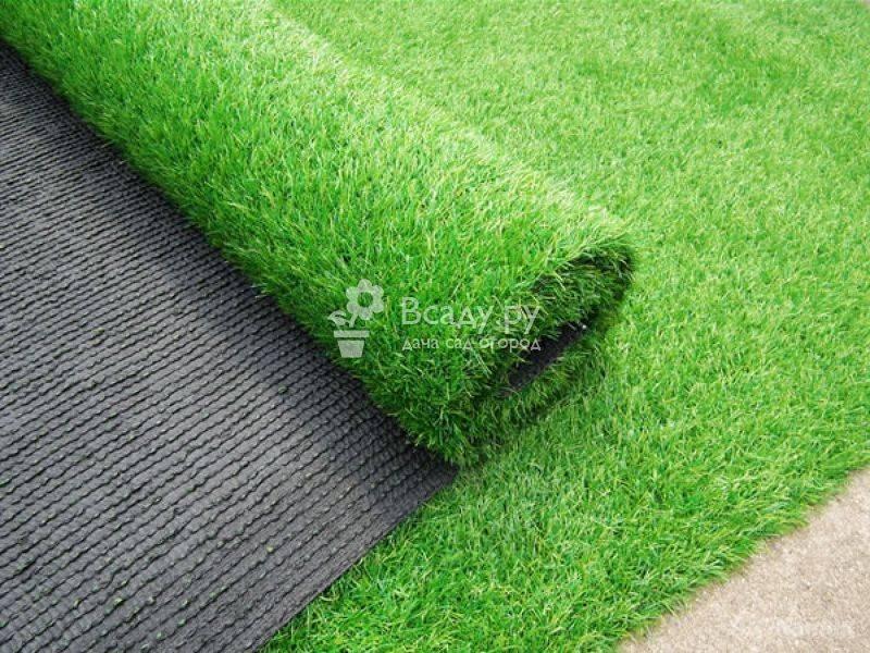 Газон на даче: виды, различия и критерии выбора покрытия для дачной лужайки
